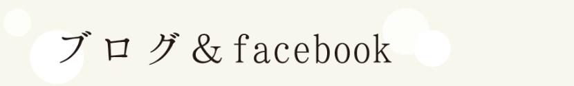 ブログ& Facebook