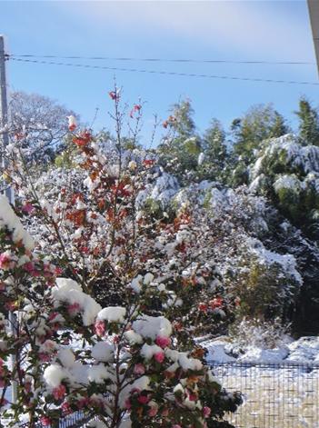 大晦日の雪
